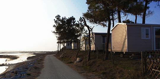 camping les Violettes7