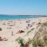 la plage des Conches près de la Tranche sur Mer