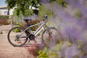 vélo Camping les Blancs Chênes la Tranche sur Mer